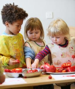Healthy Tots scheme is paying dividends for nurseries
